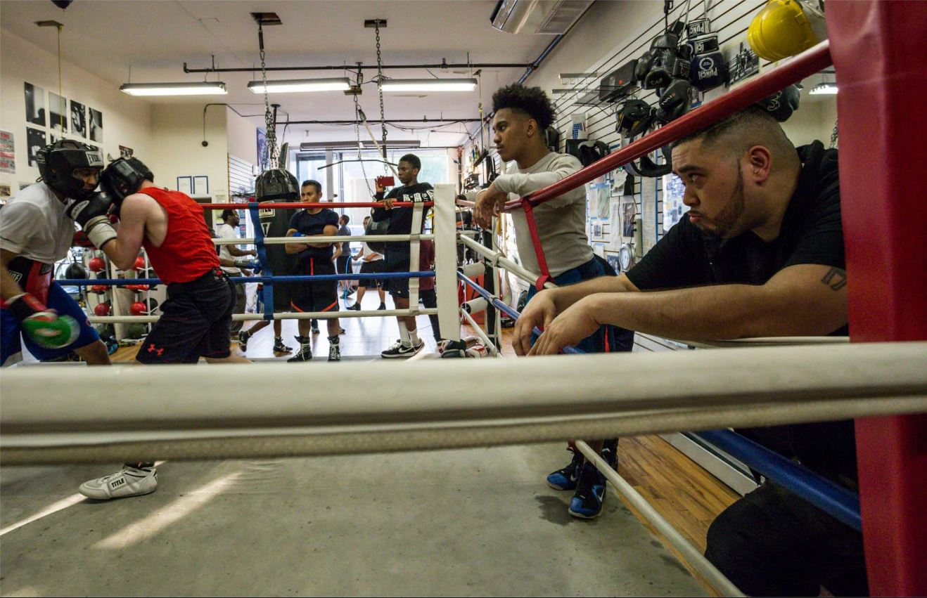 You are currently viewing The Boxing Scores – What Are We Trying To Achieve When We Fight?